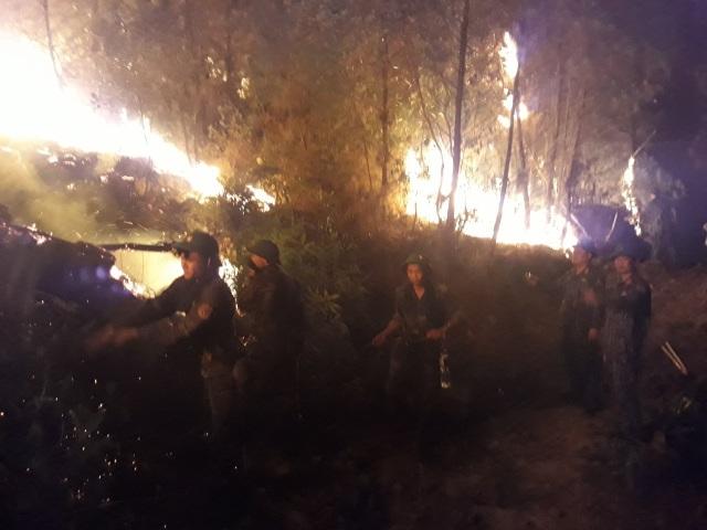 Nhiều bất cập, hệ lụytrongcông tácphòng chống cháy rừng tại Nghệ An - 2