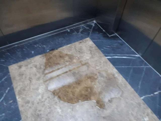 Người phụ nữ che camera nghi tiểu bậy trong thang máy chung cư Hà Nội gây bức xúc - 3