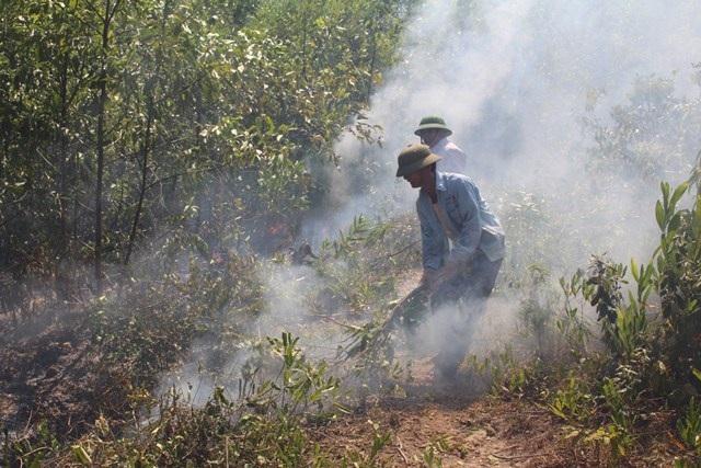 Nhiều bất cập, hệ lụytrongcông tácphòng chống cháy rừng tại Nghệ An - 4