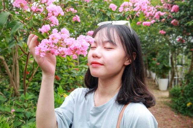Phát sốt với con đường hoa tường vi đẹp như mơ ở Hà Nội - 10