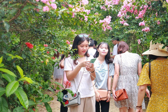 Phát sốt với con đường hoa tường vi đẹp như mơ ở Hà Nội - 3