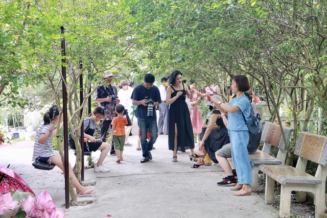 Phát sốt với con đường hoa tường vi đẹp như mơ ở Hà Nội - 5