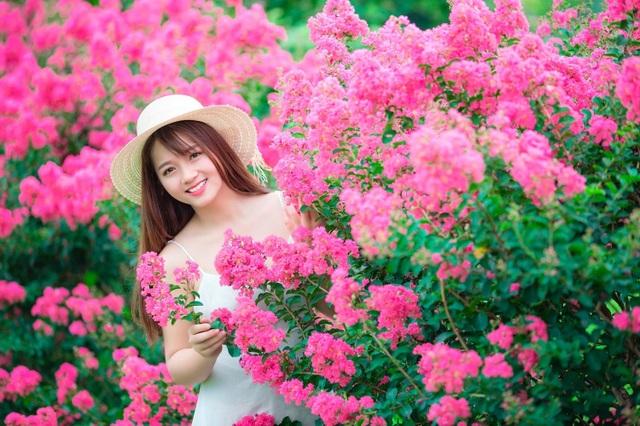 Phát sốt với con đường hoa tường vi đẹp như mơ ở Hà Nội - 6