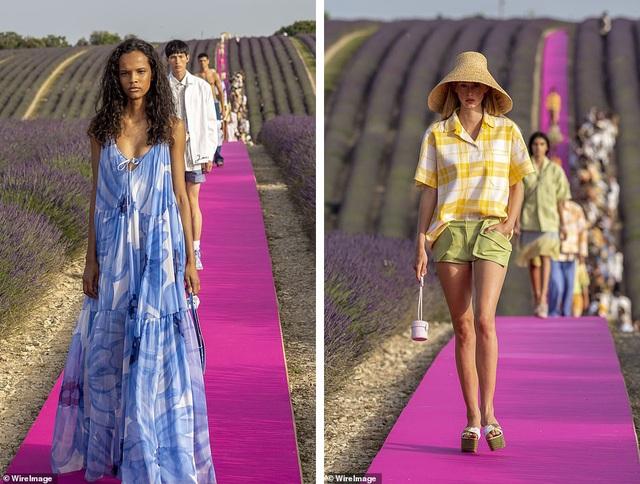 Xao xuyến trước sàn catwalk nằm giữa cánh đồng hoa oải hương - 14