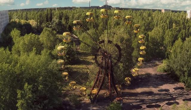 Vì sao thực vật vẫn phát triển tốt ở khu vực thảm hoạ Chernobyl? - 1