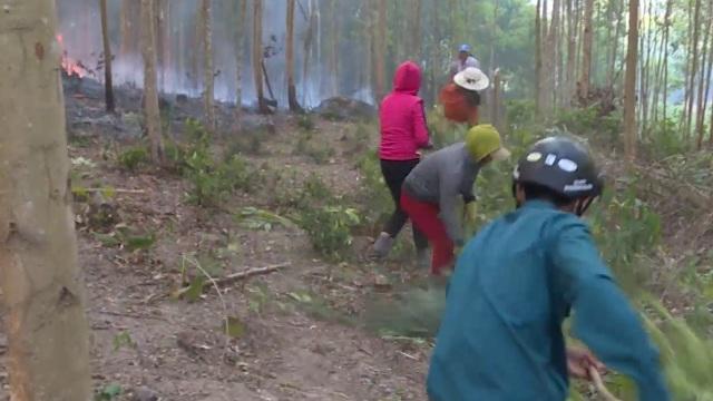 Cháy rừng suốt 15 giờ, hàng trăm người đang nỗ lực ngăn đám cháy lan rộng - 3