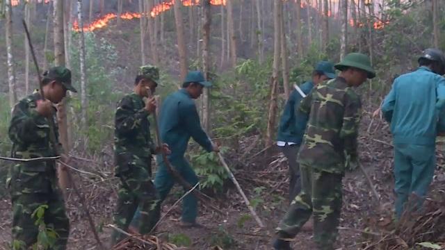 Cháy rừng suốt 15 giờ, hàng trăm người đang nỗ lực ngăn đám cháy lan rộng - 2