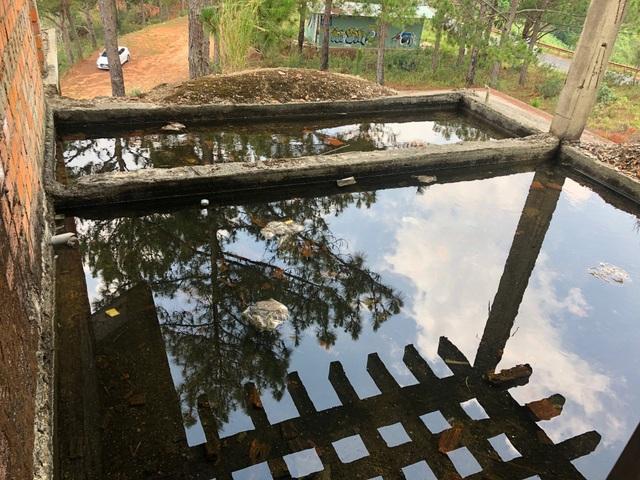 Hàng chục biệt thự cao cấp bị bỏ hoang ở hồ Tuyền Lâm - 11