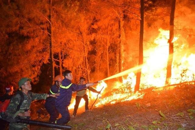 Vụ cháy rừng nghiêm trọng tại Hà Tĩnh: Bất ngờ lời khai nghi phạm! - 1