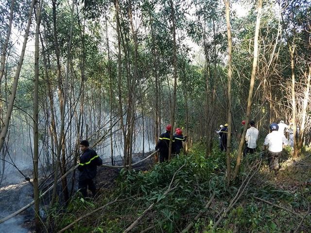 Cháy rừng cùng lúc 4 nơi ở Thừa Thiên Huế, 20 hộ dân di tán khẩn cấp - 5