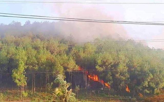 Cháy rừng cùng lúc 4 nơi ở Thừa Thiên Huế, 20 hộ dân di tán khẩn cấp - 1