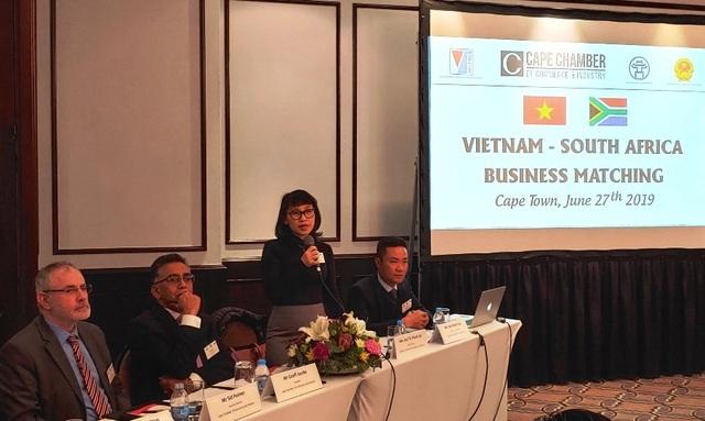 Thúc đẩy phát triển thương mại, đầu tư Việt Nam - Nam Phi  - 4