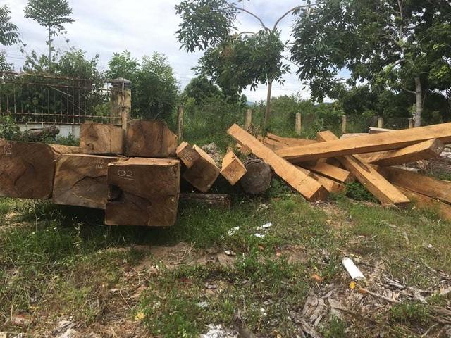 Phát hiện vận chuyển và tập kết gỗ lậu, 'lâm tặc' bỏ gỗ tẩu thoát