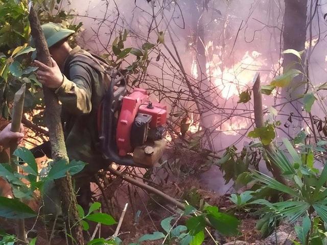 Tạm giữ 1 người nghi liên quan vụ cháy rừng nghiêm trọng tại Hà Tĩnh - 5