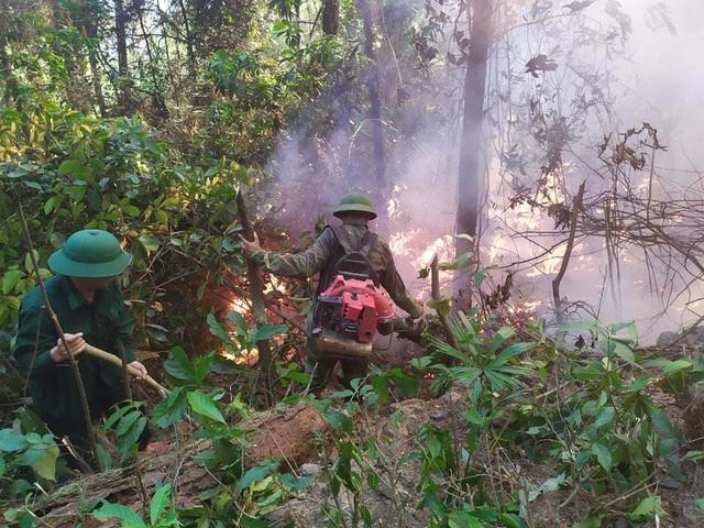 Tạm giữ 1 người nghi liên quan vụ cháy rừng nghiêm trọng tại Hà Tĩnh - 4