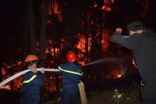 Tạm giữ 1 người nghi liên quan vụ cháy rừng nghiêm trọng tại Hà Tĩnh - 11