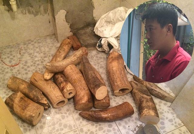 Hà Nội: Bắt quả tang đối tượng vận chuyển 207 kg ngà voi