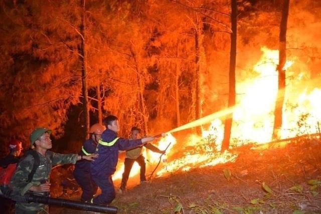 Xót xa trước những vần thơ viết về cảnh cháy rừng dữ dội ở Nghệ An - Hà Tĩnh - 2