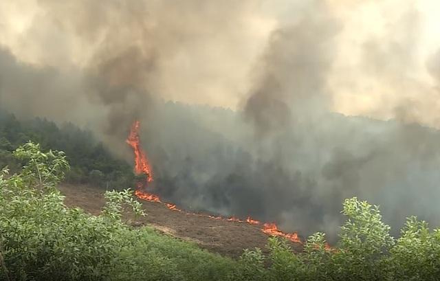 Hơn 50ha rừng bốc cháy, hàng trăm người căng mình dập lửa - 1