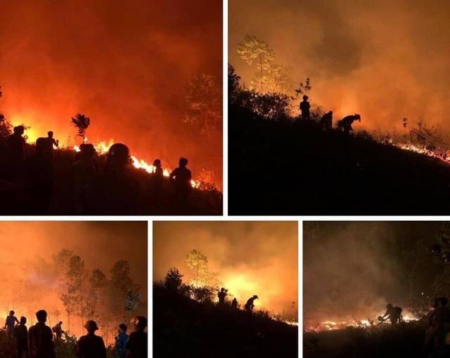 Xót xa trước những vần thơ viết về cảnh cháy rừng dữ dội ở Nghệ An - Hà Tĩnh - 1