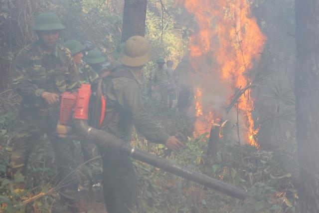 Toàn cảnh hơn 3 ngày đêm cháy rừng tràn lan ở Hà Tĩnh - 1