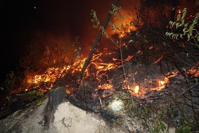 Toàn cảnh hơn 3 ngày đêm cháy rừng tràn lan ở Hà Tĩnh - 4