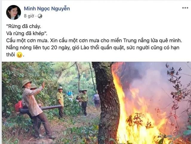 Khóc cùng bài thơ Rừng ơi, đừng cháy nữa! của cô giáo dạy Sử - 2