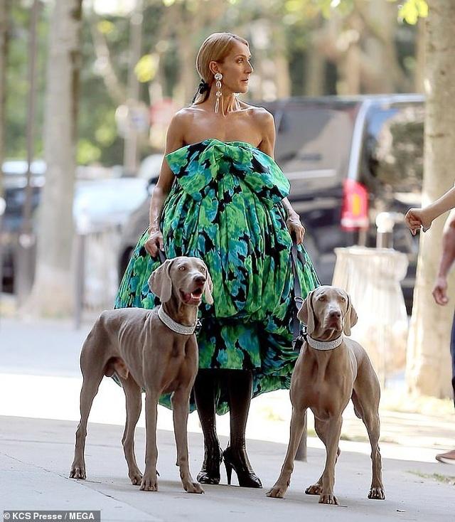 Celine Dion thay loạt trang phục sành điệu chụp hình thời trang trên phố - 4