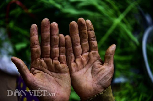 Cặp chị em trồng rau bí, bỏ túi tiền triệu mỗi ngày ở đảo hoang giữa Thủ đô - 12