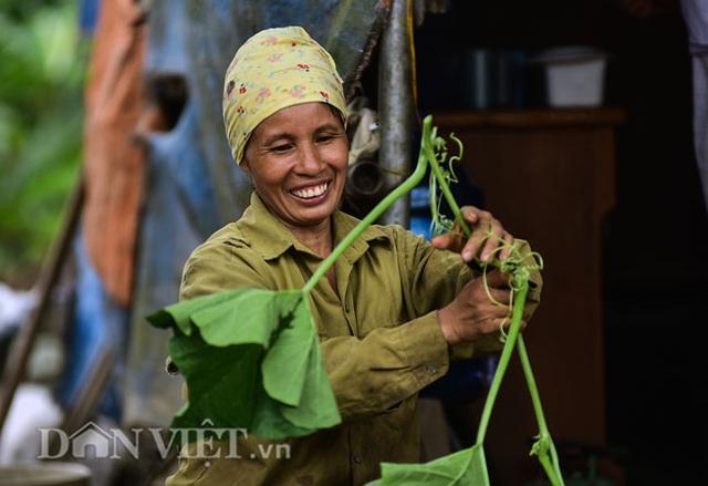 Cặp chị em trồng rau bí, bỏ túi tiền triệu mỗi ngày ở đảo hoang giữa Thủ đô - 9