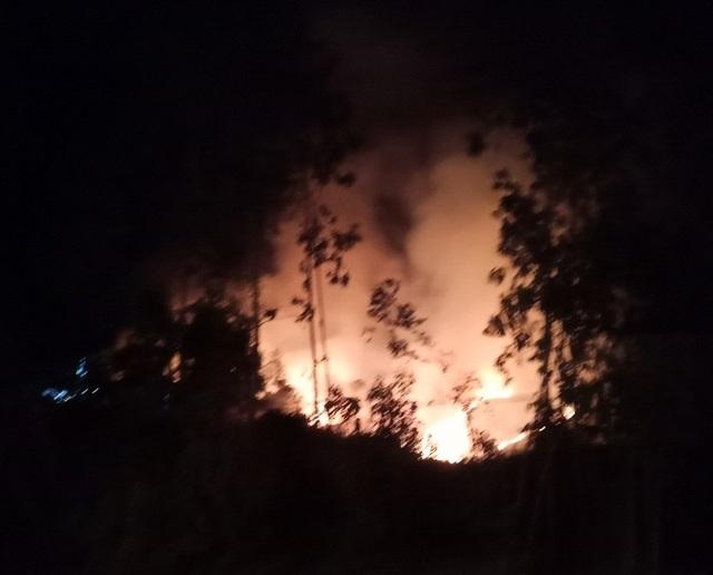 Cháy rừng suốt 1 ngày đêm tại Quảng Ngãi - 1
