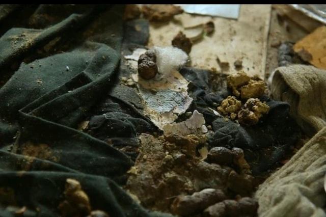 Hình ảnh gây sốc trong căn nhà 5 năm không đổ rác được lột xác - 2