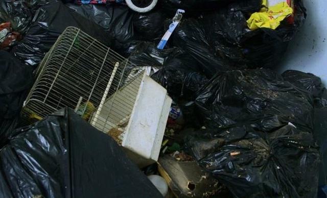 Hình ảnh gây sốc trong căn nhà 5 năm không đổ rác được lột xác - 4