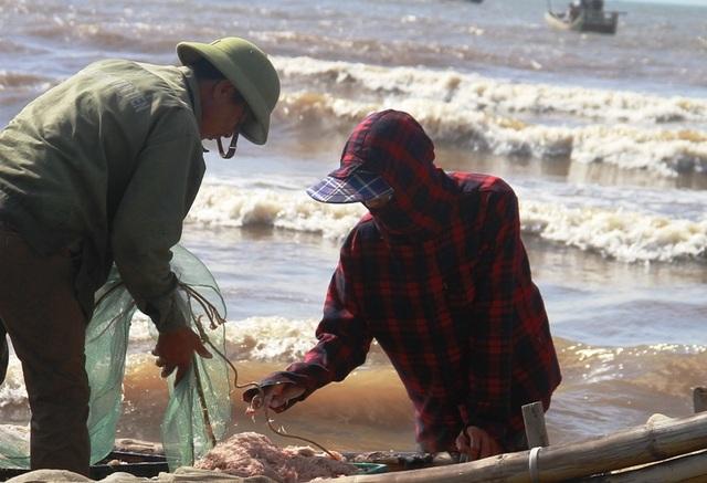 Ngư dân xứ Thanh kiếm tiền triệu nhờ trúng đậm moi - 7