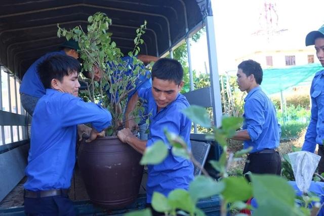 Đoàn viên, thanh niên Quảng Trị trồng hoa giấy làm đẹp đảo Cồn Cỏ - 2