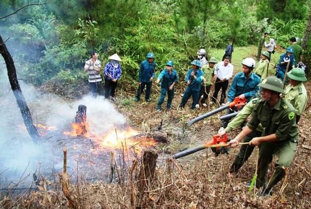 Thanh Hóa khẩn cấp phòng chống cháy rừng, hỏa tốc ứng phó mưa bão - 2