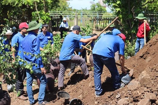 Đoàn viên, thanh niên Quảng Trị trồng hoa giấy làm đẹp đảo Cồn Cỏ - 3