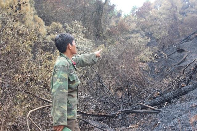 Người đàn ông đặc biệt trong vụ cháy rừng kinh hoàng ở Hà Tĩnh - 2