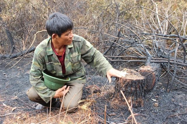 Người đàn ông đặc biệt trong vụ cháy rừng kinh hoàng ở Hà Tĩnh - 3