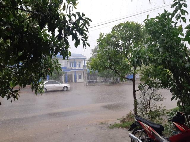 Cơn mưa quý hơn vàng giải cứu người dân sau những ngày nắng nóng - 4
