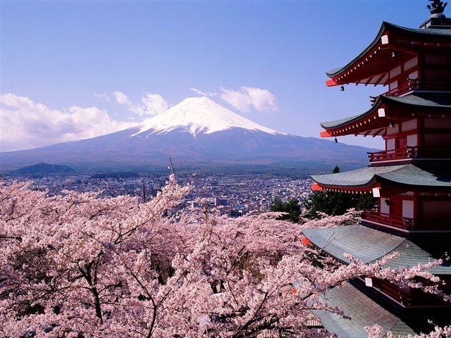 8 công ty du lịch Việt bị Nhật Bản hủy bỏ, đình chỉ tư cách xin visa - 1