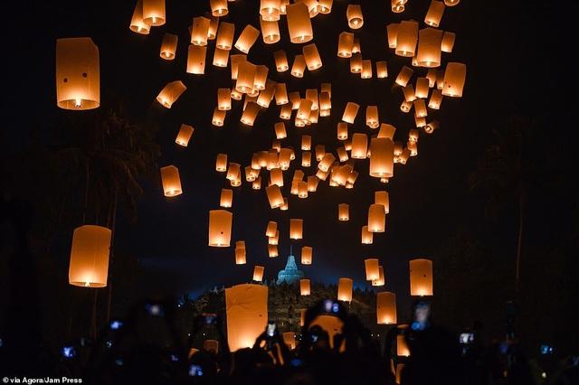 Bức ảnh gây sửng sốt của nhiếp ảnh gia Việt Nam tại giải ảnh quốc tế - 19