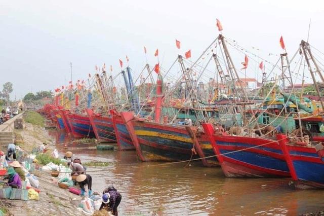 Hải Phòng mưa lớn, biển động; Quảng Ninh giải cứu 8 ngư dân mắc kẹt - 5