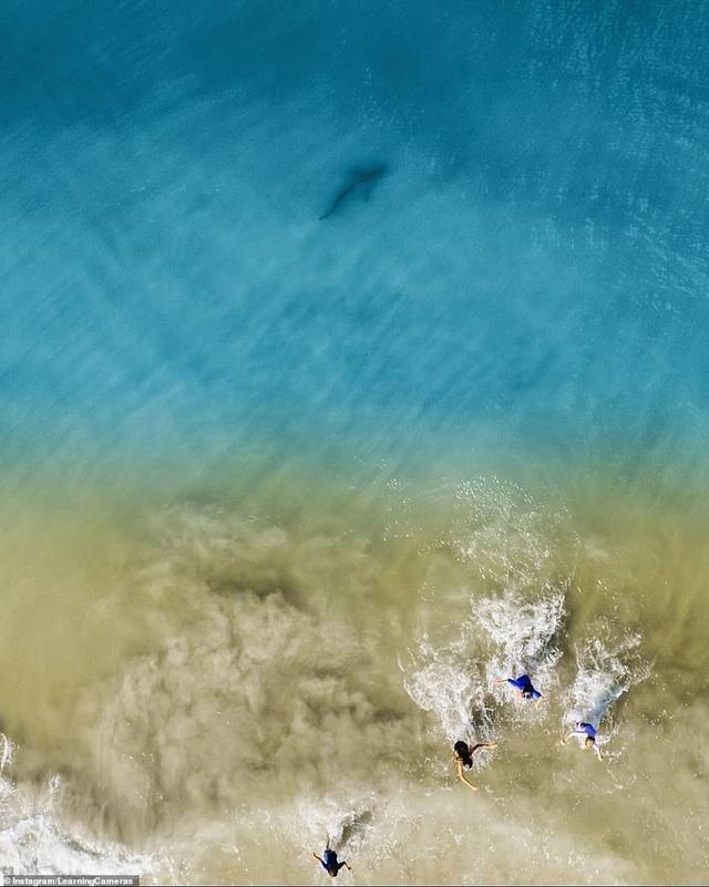 Chụp ảnh biển từ trên cao, ông bố điếng người phát hiện tử thần lởn vởn gần con mình - 2