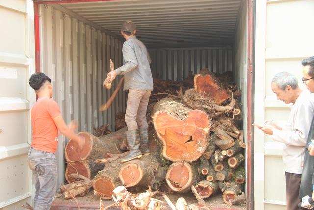 """Vỡ kế hoạch bán đấu giá hơn 5 tấn gỗ """"sưa trăm tỷ"""" - 2"""