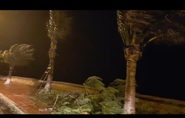 Hải Phòng mưa lớn, biển động; Quảng Ninh giải cứu 8 ngư dân mắc kẹt - 2