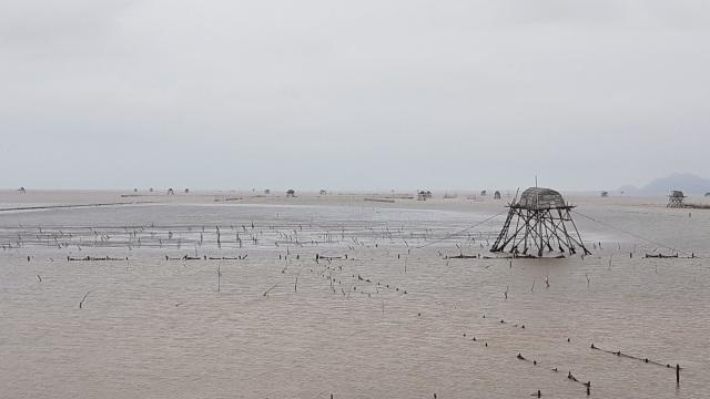 Hải Phòng mưa lớn, biển động; Quảng Ninh giải cứu 8 ngư dân mắc kẹt - 4