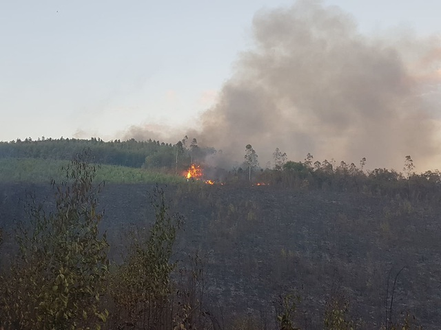 Rừng keo cháy dữ dội, 300 người lăn lộn hơn nửa ngày chưa dập được lửa - 4