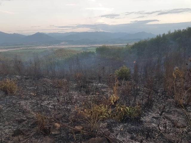 Rừng keo cháy dữ dội, 300 người lăn lộn hơn nửa ngày chưa dập được lửa - 3