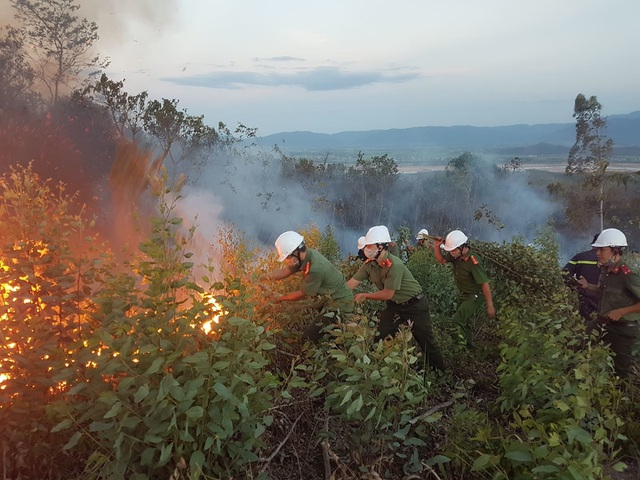 Rừng keo cháy dữ dội, 300 người lăn lộn hơn nửa ngày chưa dập được lửa - 2